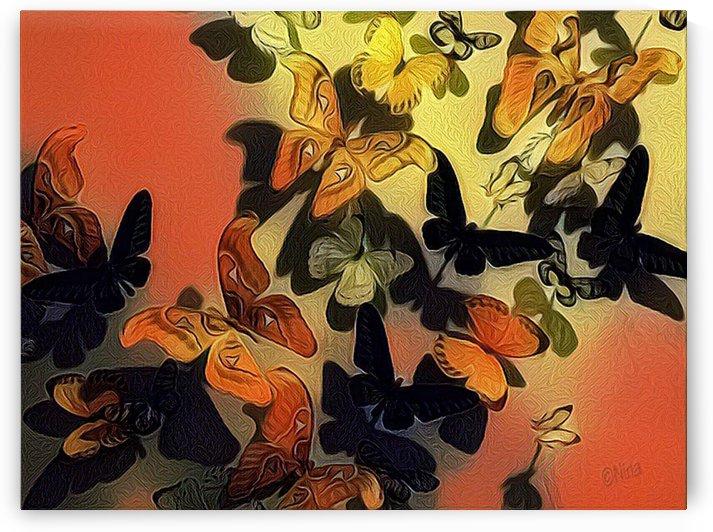 Flutters by Nina