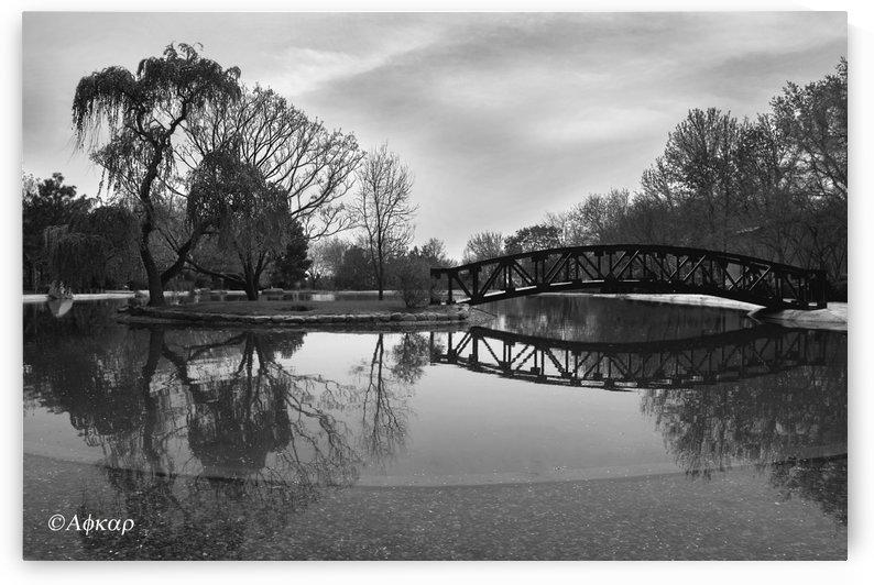Bridge of dreams by ali eftekhar