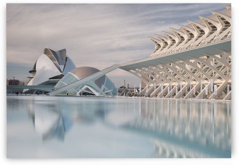 Science Museum, Valencia by Keith Truman