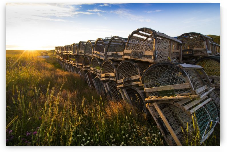 Lobster trap by Rene Beaulieu
