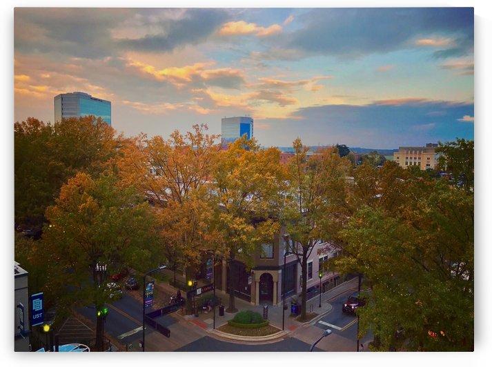 City Views by LC Prints