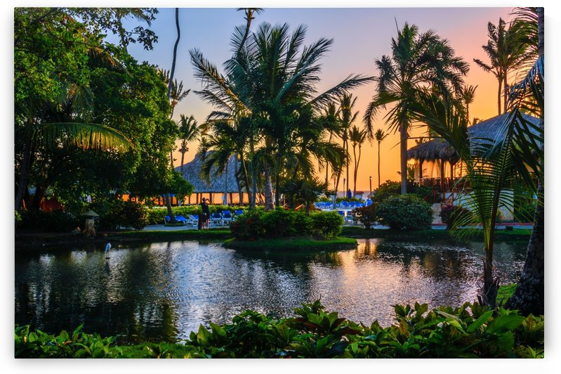 Multicolored tropical dawn with pond and palm trees, white pelican by Viktor Birkus