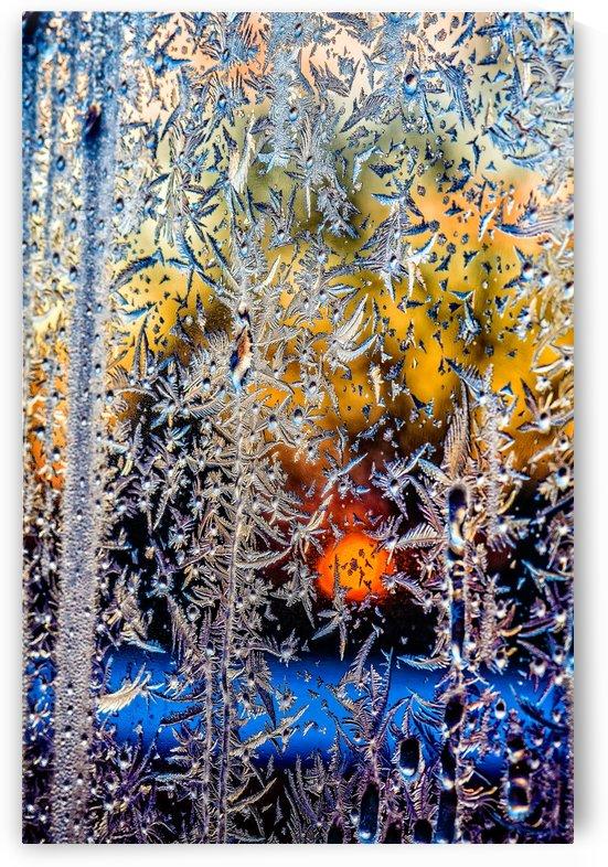 winter window frosting patterns by Viktor Birkus