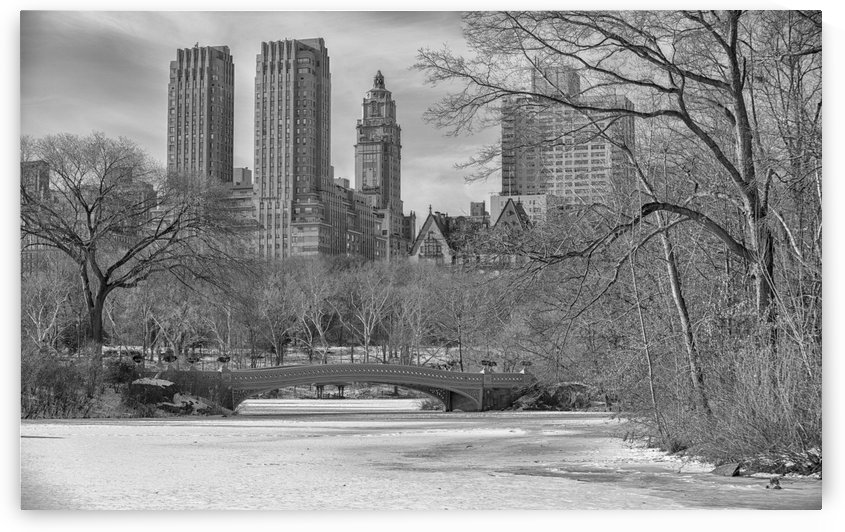 Central Park by Laurie