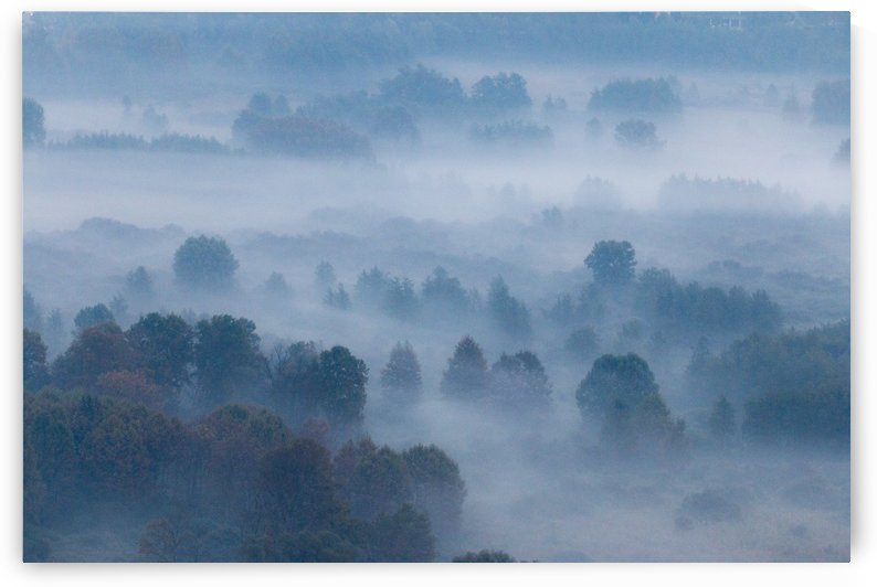 Morning mist by Pietro Ebner