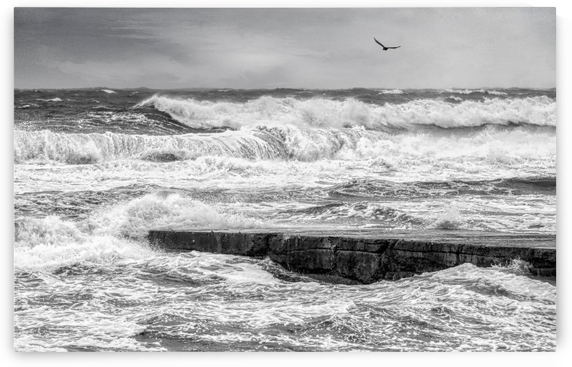 Stormy Seas by Michel Soucy