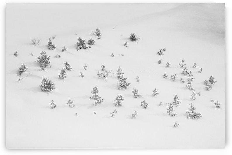 Winter storm by Marko Radovanovic