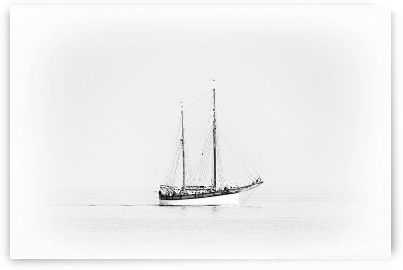 Sailor by Kirsten Warner