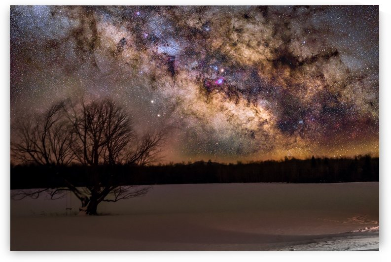Lone Tree and the Milky way by Lrenz