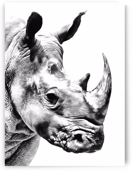 Rhino by Richard D. Jungst