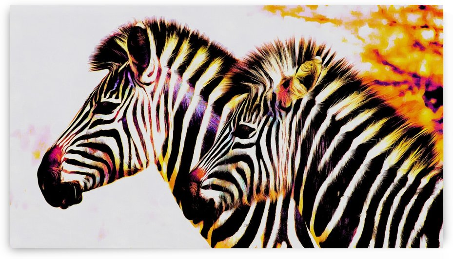 Rainbow Colored Zebras by Richard D. Jungst