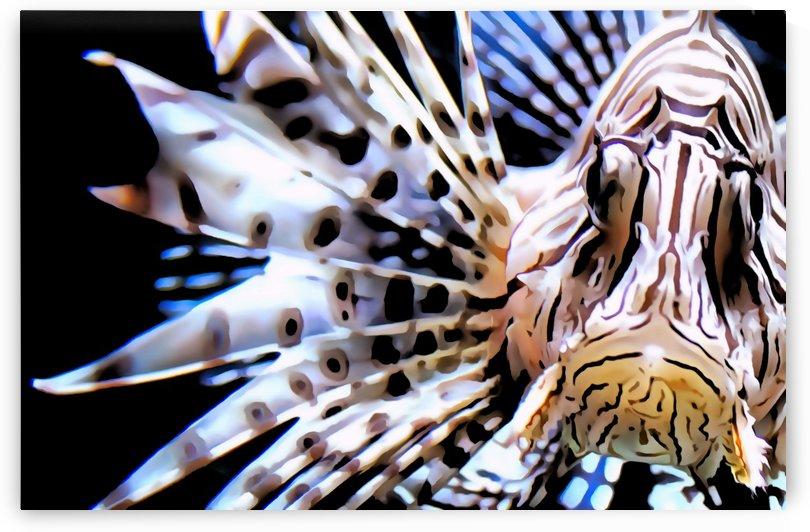 Lion Fish by Illuminary Artworks