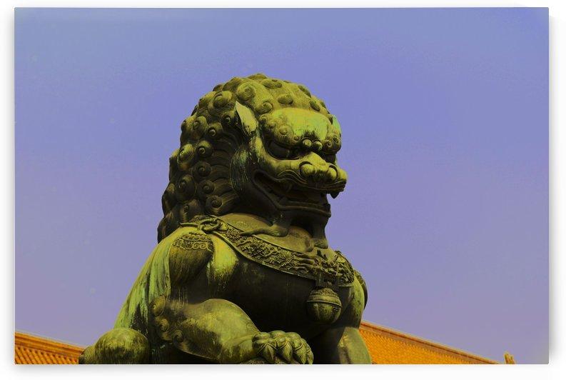 the forbidden city by MENG LU