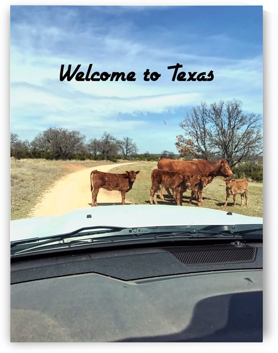 welcometotexas by Michael Trego