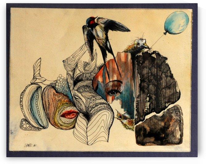 swallow. by John Biro