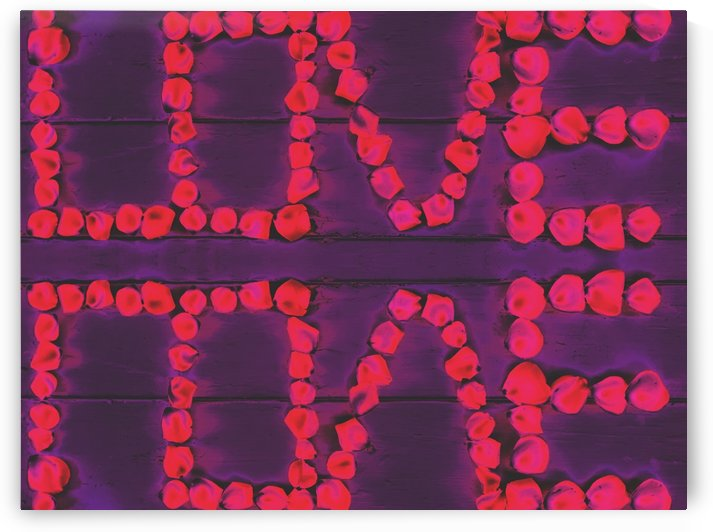 LOVE with pink rose on the purple wood background by TimmyLA