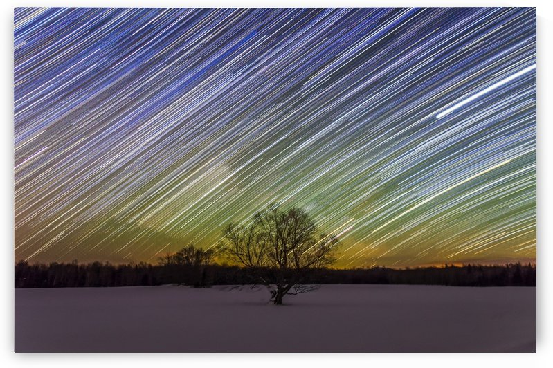 Star Trails and Lone Tree by Lrenz