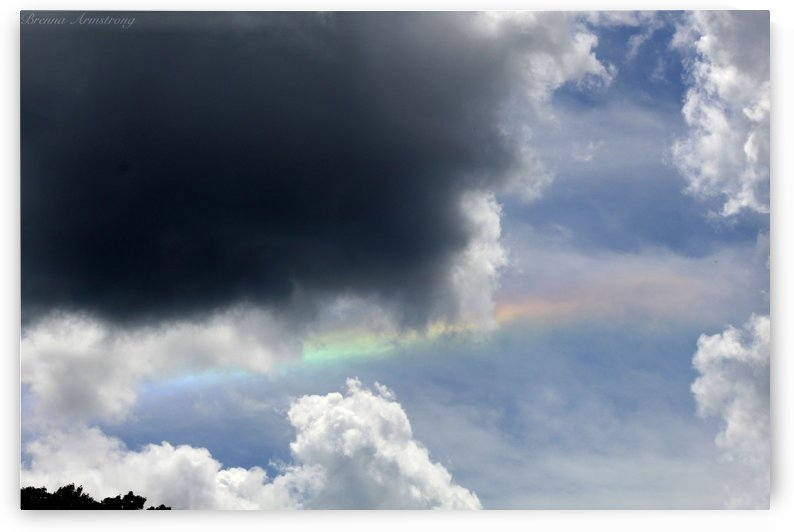 Rainbow by Brenna Armstrong