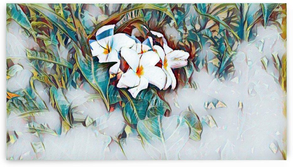 Floral Artwork by Nikhil Goyal