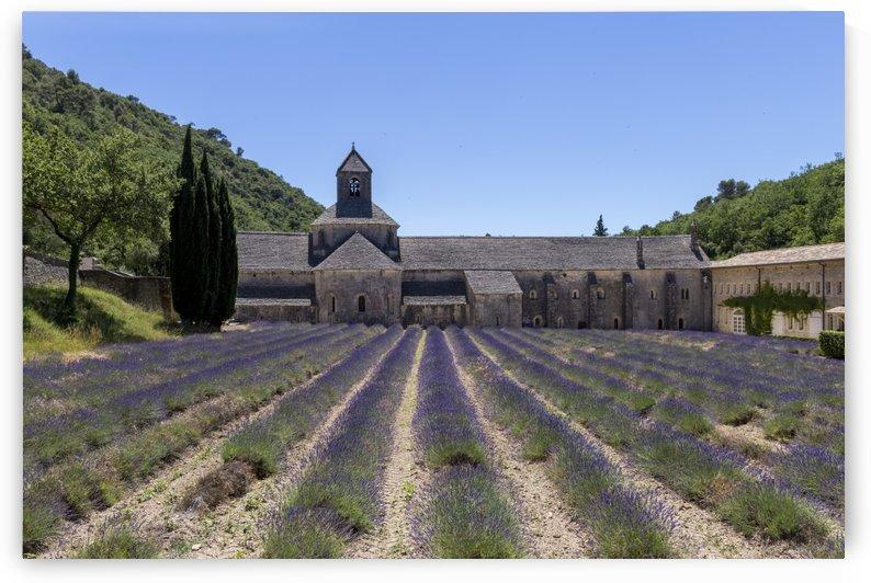 Senanque abbey by Pietro Ebner