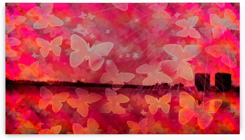 Patterns by Nilu Mishra