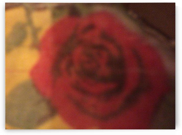 Rose erotic love by Essicah Aloe