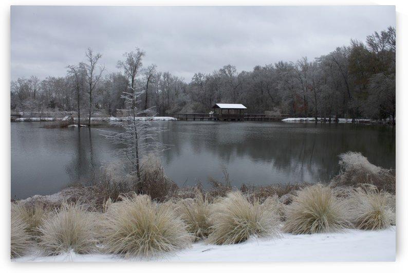Winter at Brick Pond Park by Zikia Smith