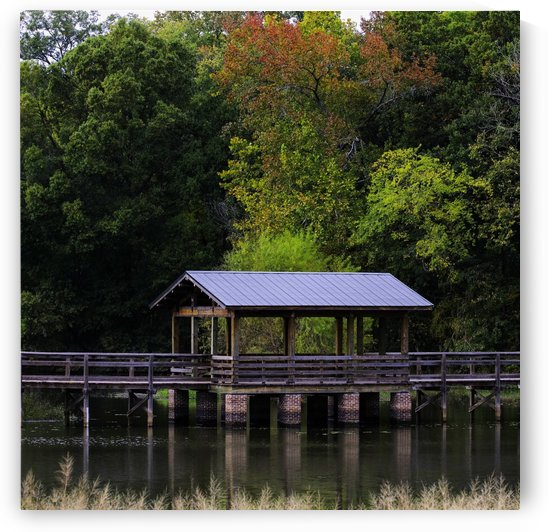 Gazebo in HDR by Zikia Smith