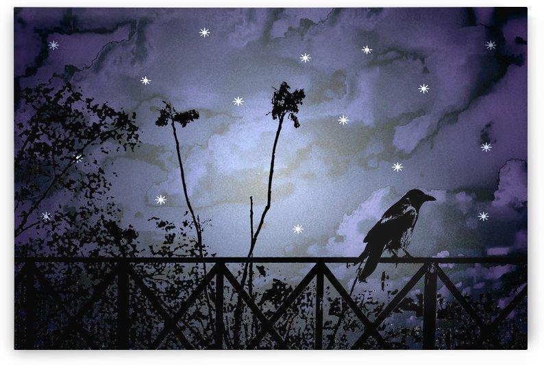 Fantasy Dark Night Scene Illustration by Daniel Ferreia Leites Ciccarino