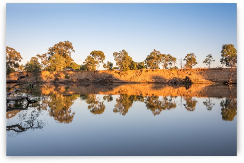 Reflections on the Murray River by Grant Cookson