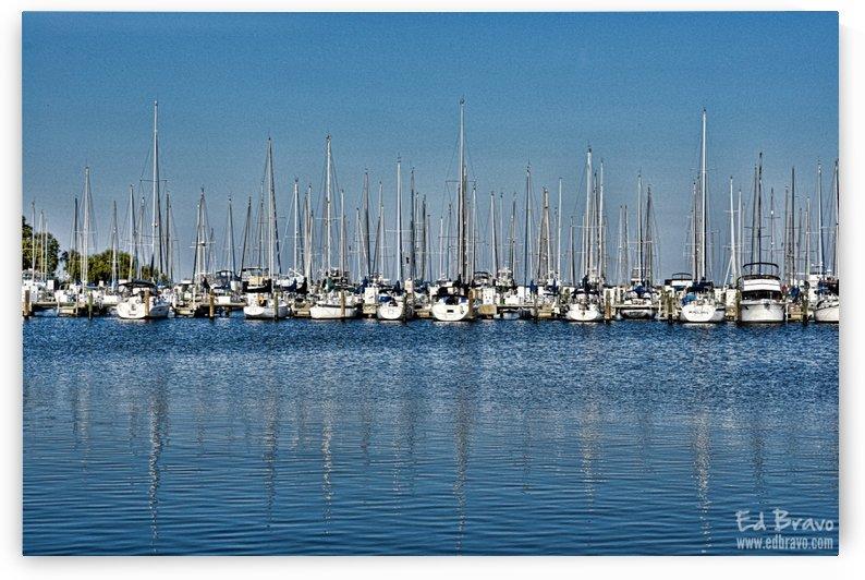marina st petersburg by Eduardo Bravo