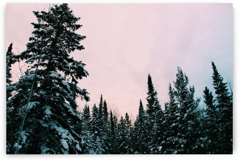 Snowy Sunset by Morgan Ann Photography