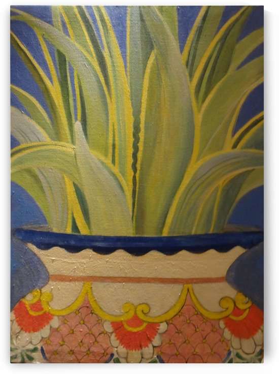 Agave by DONNA REIBSLAGER