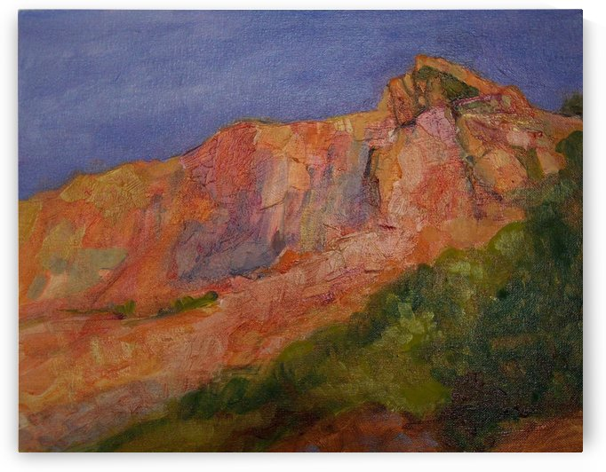 Red Cliffs by DONNA REIBSLAGER