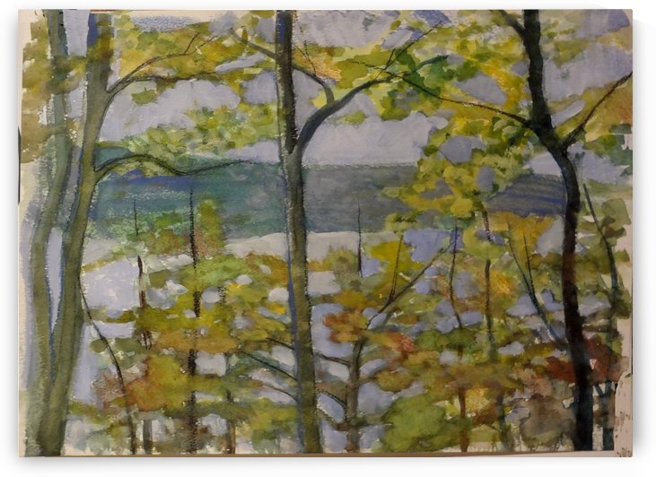 View of the Lake by DONNA REIBSLAGER