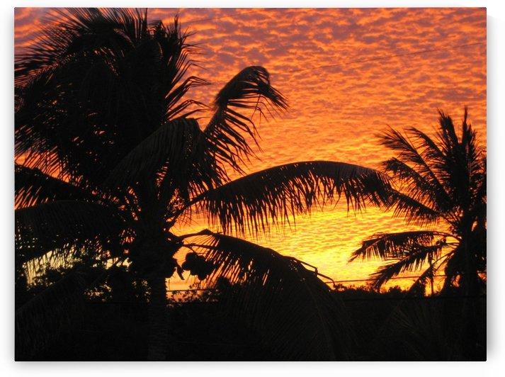 Key Largo  by Ashden