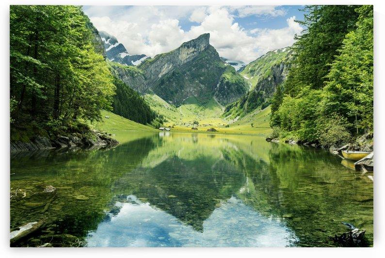 Tranquil scene of seealpsee lake  by Besa Art