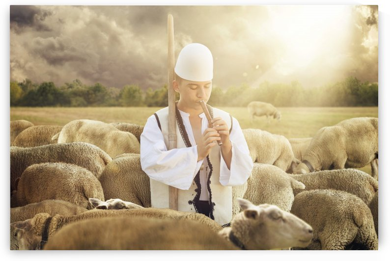 Albanian shepherd surrounded by sheeps by Besa Art