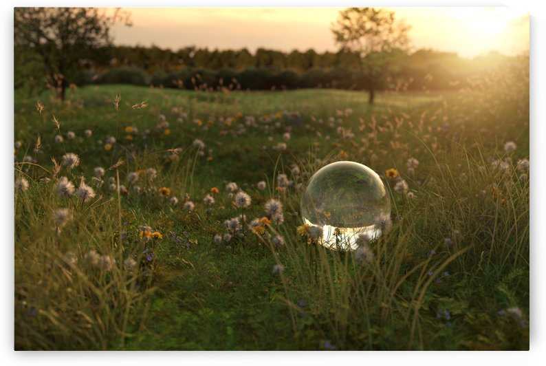 glass ball in the evening sunshine by Besa Art