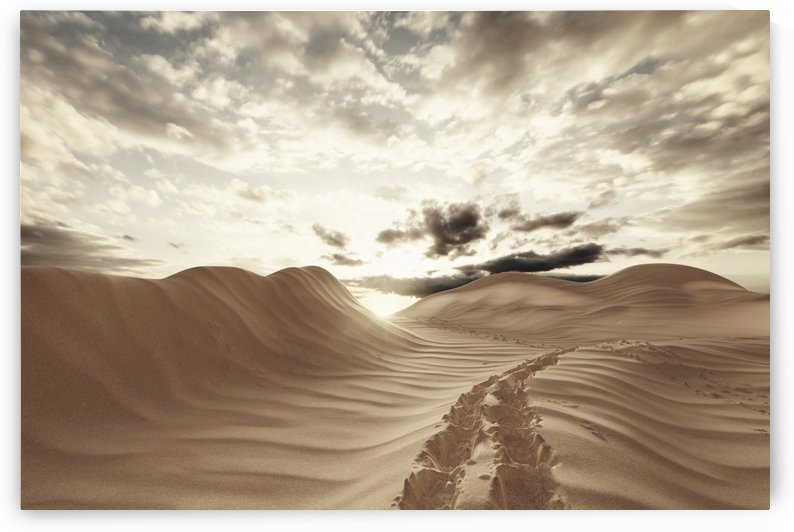 footsteps of desert by Besa Art