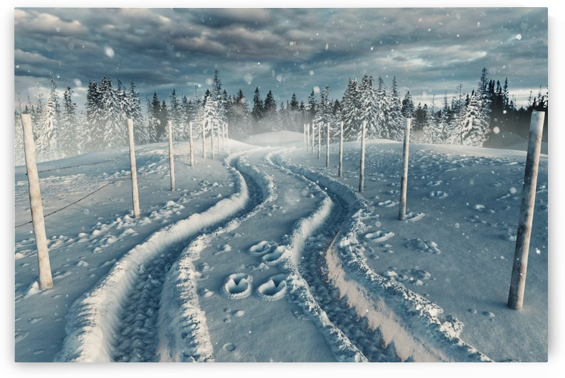 snow tracks by Besa Art