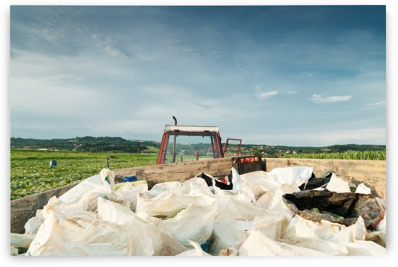 tractor charged with harvesting bags  by Besa Art