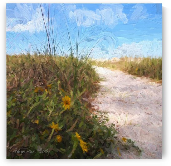 A Trail to the Beach by Jacqueline Sleter