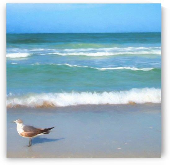 Surfs Up by Jacqueline Sleter
