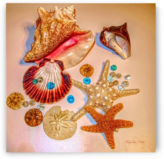 Sea Treasures by Jacqueline Sleter