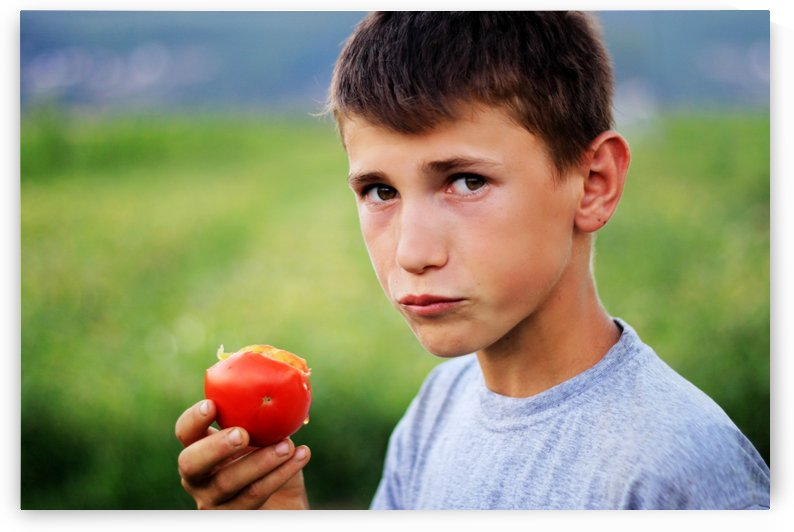 teenager boy eating fresh picked tomato at green plantation by Besa Art