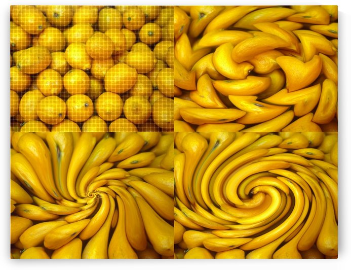 LEMON COLLAGE by Tamarra Views