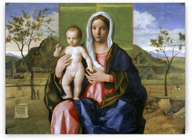 Giovanni bellini, madonna di brera by Giovanni Bellini