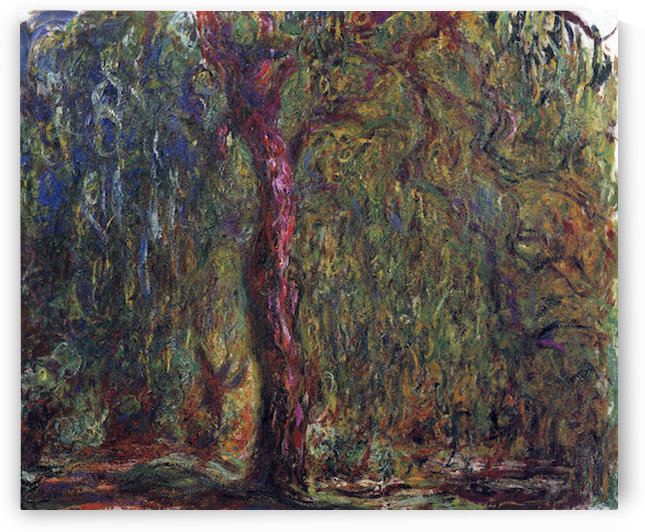 Weeping willow by Monet by Monet