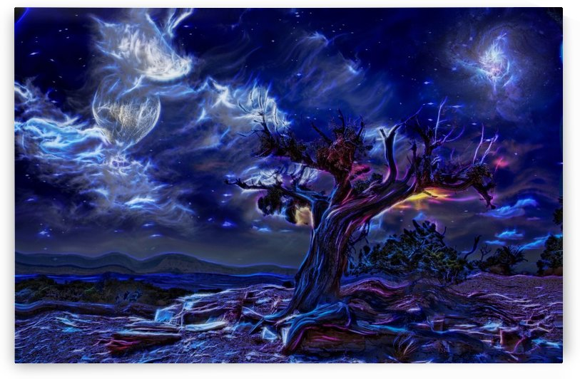 Night Landscape by Bruce Rolff